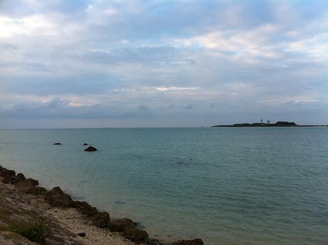 沖縄の指導者講習会での授業:ヲタクっぷり[8]